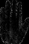 MitchelDae-hi-contrast-hand-2_edited.png