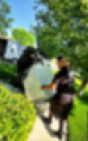 Reno movers - Reno moving - Professional Movers