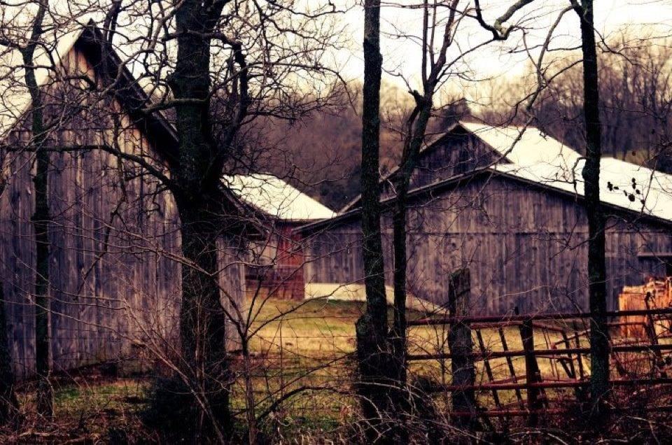 Old Tobacoo Barns