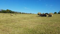 Moving Hay