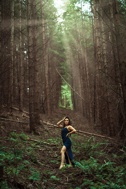 forest 6.jpg
