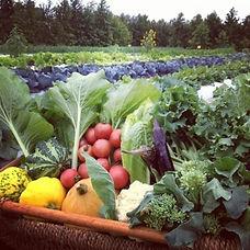 fresh-veggies-when-we_edited.jpg