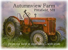 Autumnview logo.jpg