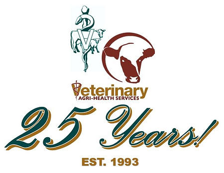 25 Year Logos.JPG