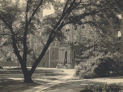 CCHM Postcard - University Hall