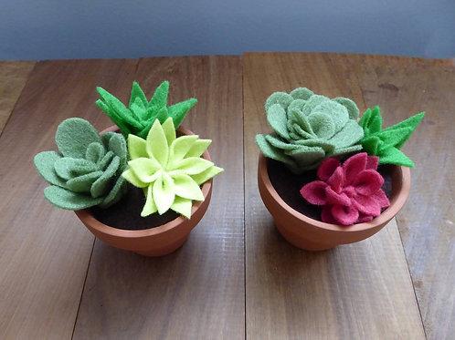 Faux Cactus/Succulent Decor