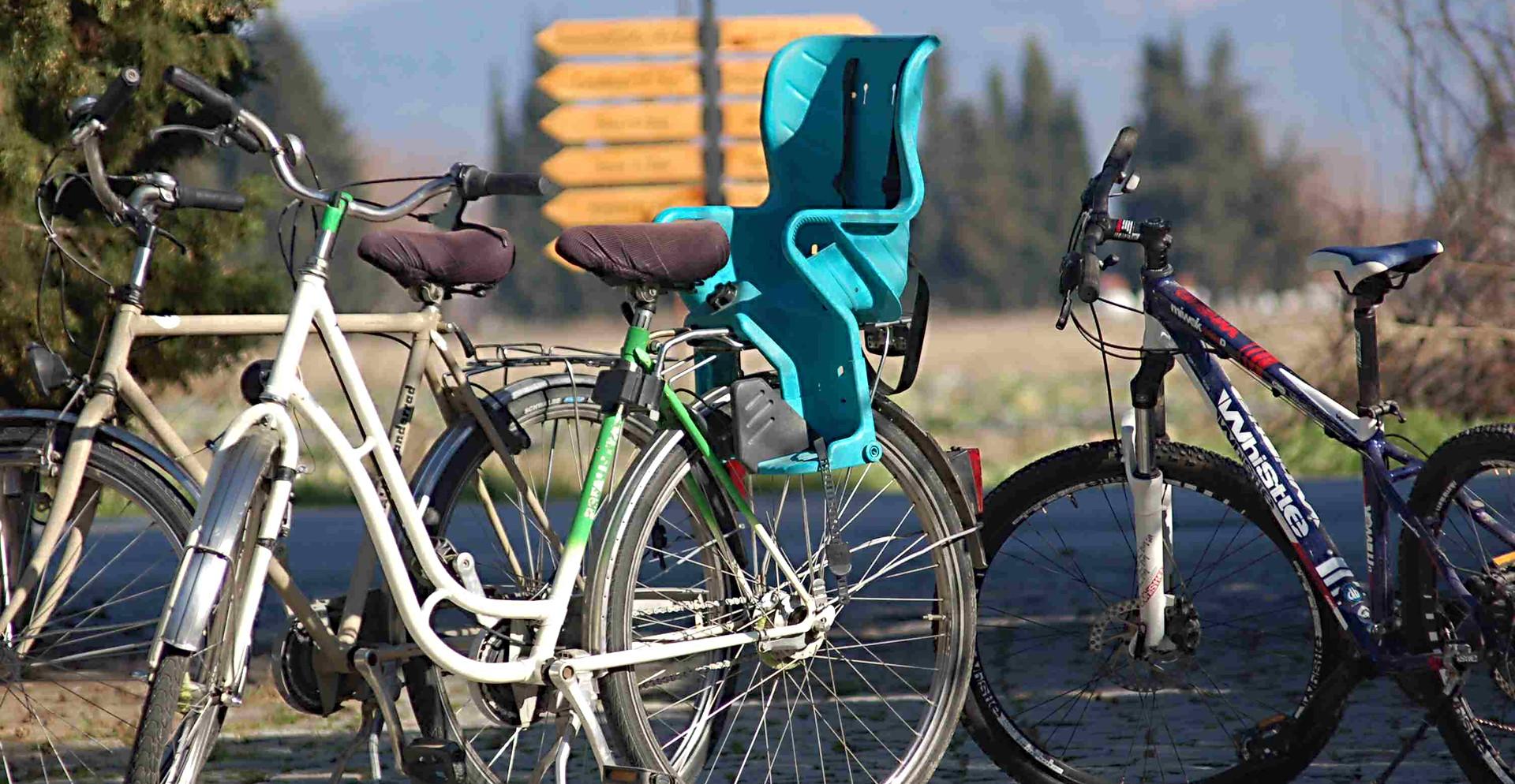Bikes to rent