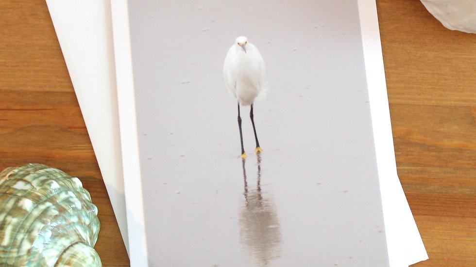 Snowy Egret photo card -9527