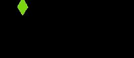 APEX mobile media - full logo.png