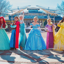Princess Wish Parties