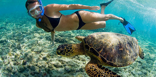 Which Caribbean Island Has The Best Snorkeling?