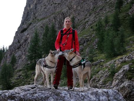 I learned a lot from a Czechoslovakian Wolfdog