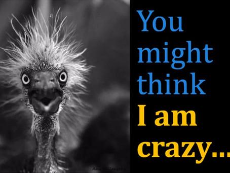 You might think I am crazy