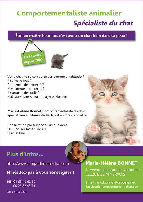 pub comportementaliste chats.png