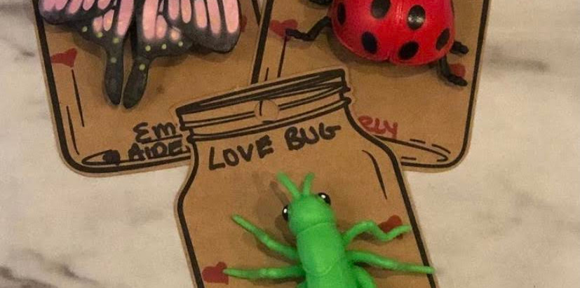 Valentine's Day Crafts: Love Bug