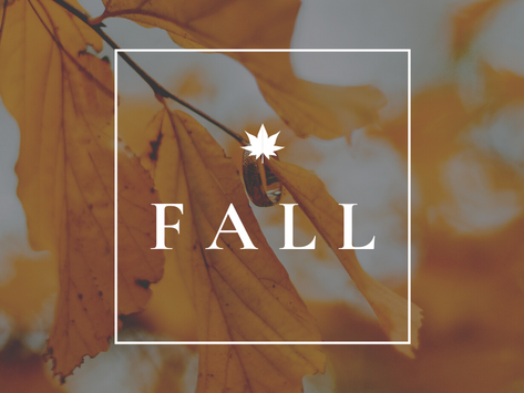 Tips To Get Your Home Ready For Fall!