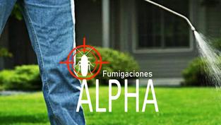 Alpha Fumigaciones
