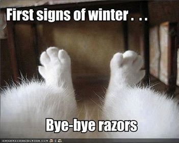 Winter signs