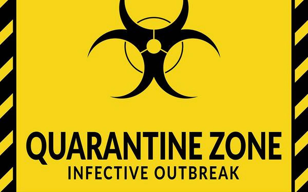 THE LEGALITY OF QUARANTINE POWERS:A CROSS COUNTRY ANALYSIS IN THE LIGHT OF CONSTITUTIONAL SAFEGUARDS.