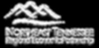 White Logo Netrep.png