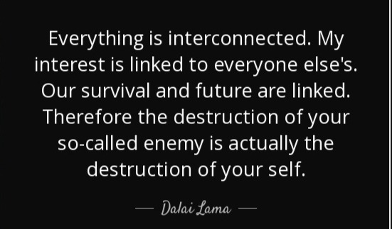 quote-everything-is-interconnected-my-in