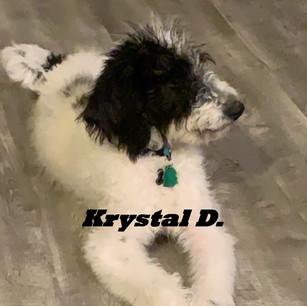 Krystal D..jpeg