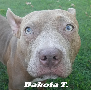 Dakota T..jpg