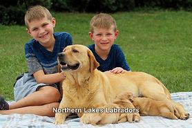Boys with Raina and Pups 8.25.19 (2)-2.j