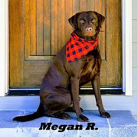 Megan R.jpeg