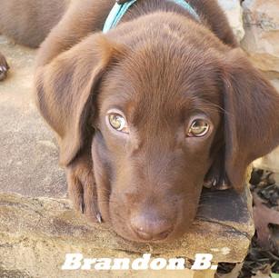 Bradon B..jpg