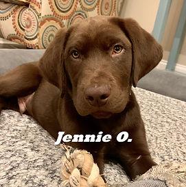 Jennie O..jpeg