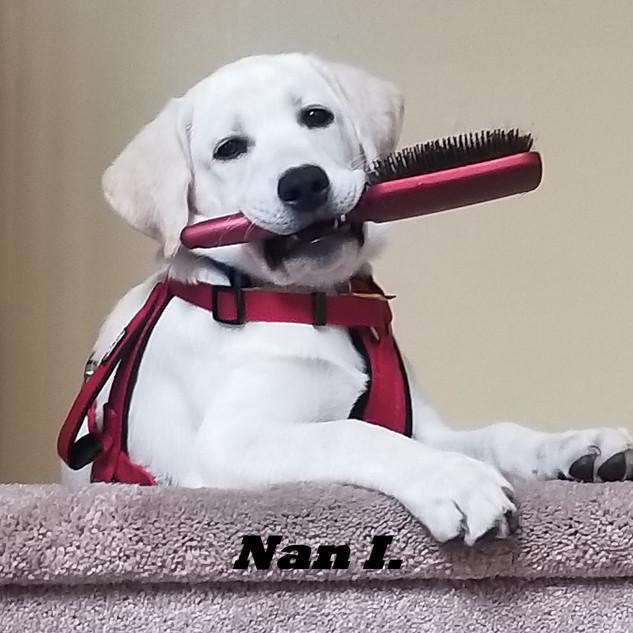 Nan I..jpg