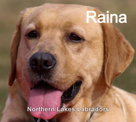 Raina 2.4_edited.jpg