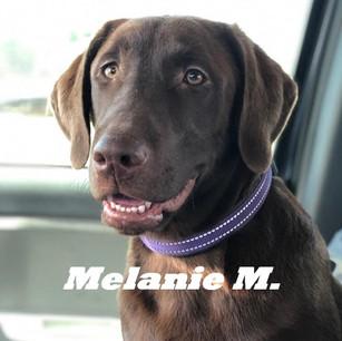 Melanie M..jpeg