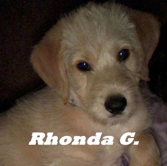 Rhonda G..jpeg