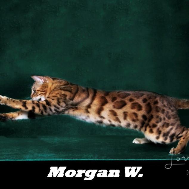 Morgan W..jpeg