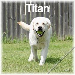 tn_Titan 7_edited