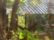 contact eco lodge kandy, eco lodge sri lanka, contact polwaththa, call email polwaththa, ecotourism sri lanka