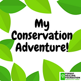 My Conservation Adventure!.png
