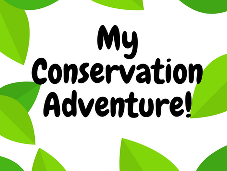 Conservation for Kids