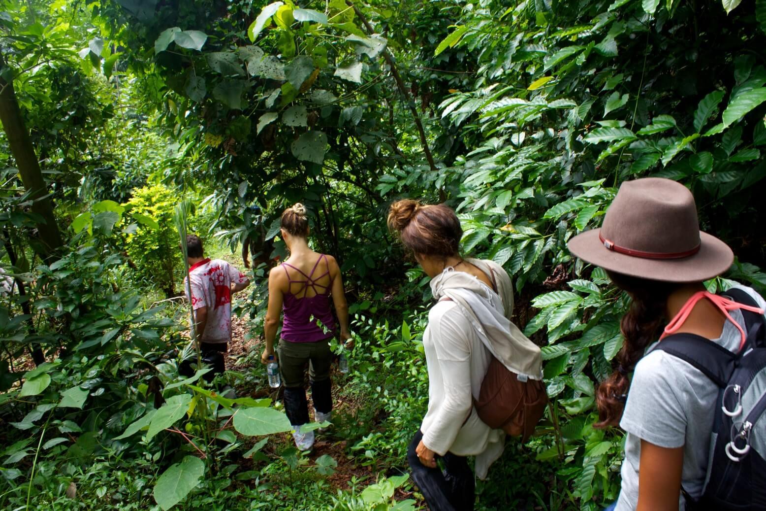 trekking-kandy-srilanka