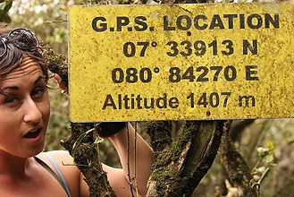 Trekking in Kandy Sri Lanka, Jungle trekking Sri Lanka, hiking Kandy Sri Lanka, trekking knuckles mountains, knuckles range Sri Lanka, trekking rice fields tea plantations, tea fields sri lanka, trekking waterfalls river, wild swimming sri lanka