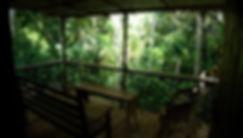 dormitory sri lanka, nature dorm, nature lodge, shared dorm kandy, eco lodge kandy, eco dorm, shared nature lodge
