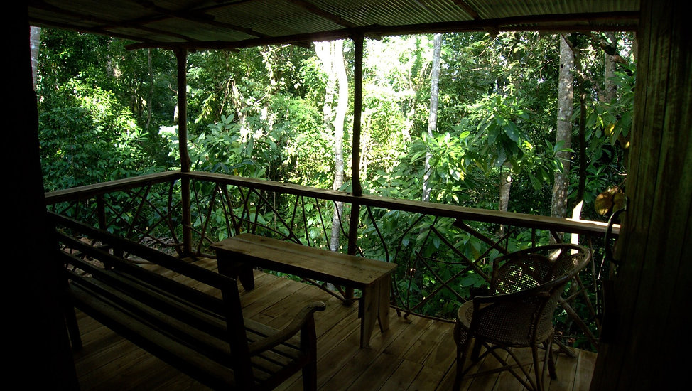dormitory sri lanka, nature dorm, nature lodge, shared dorm kandy, eco lodge kandy, eco dorm, shared nature lodge