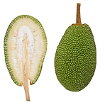 Jackfruit_Sri-Lanka.jpeg