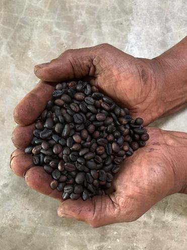 coffee_ekoland.jpeg.jpg
