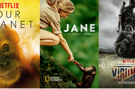 Conservation Book & Netflix Club: April 2020