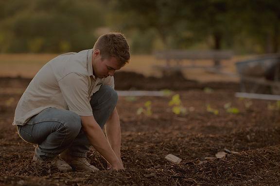 farmer, farm