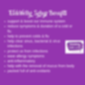 Copy of Elderberry Syrup Benefits logo s