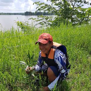 Salvando el Río Magdalena